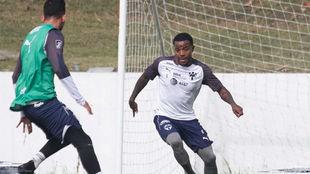 En Palmeiras piensan en la Copa Libertadores, por eso apuntaron a los...