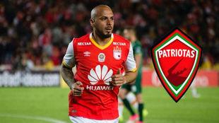 Omar Pérez nuevo jugador de Patriotas