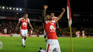 Wilson Morelo celebrando su gol
