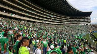Aficionados del Deportivo Cali asisten al Coloso de Palmaseca.