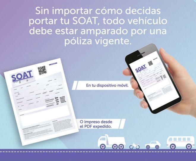 Cartagena: El SOAT será digital a partir del 2019 | EL UNIVERSAL