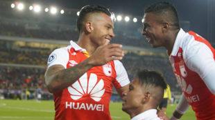 Wilson Morelo, Johan Arango y Arley Rodríguez festejan un tanto.