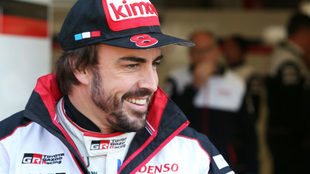 Fernando Alonso / Toyota