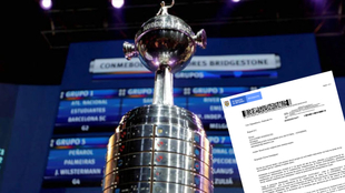 Copa Libertadores y el documento de respuesta del Ministerio del...