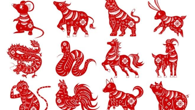 Horóscopo Chino Qué Animal Soy Y Qué Elemento Me Representa En La Astrología China Marca Claro Colombia