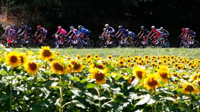Tour de Francia 2021: Etapa 19 del Tour de Francia 2021, en vivo: Resultado  de la carrera de ciclismo, en directo   MARCA Claro Colombia