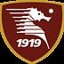Unione Sportiva Salernitana 1919 S.r.l.